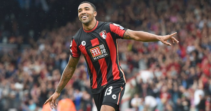 Callum Wilson: Ruled out for six months with knee injury