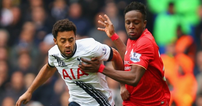 Mousa Dembele (l): Feels he has a lot to offer Tottenham