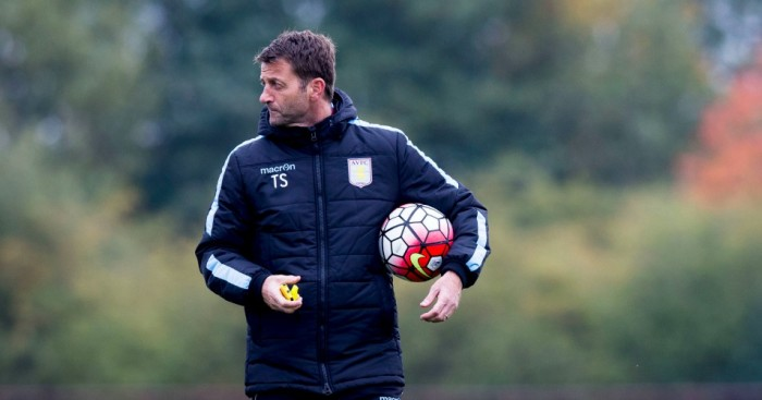 Tim Sherwood: Fighting for his job at Aston Villa