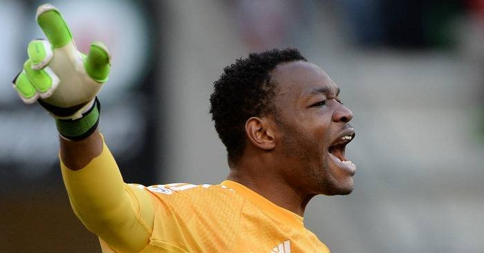 Steve Mandanda: Goalkeeper has 21 caps for France