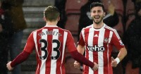 Shane Long: Celebrates his goal against Watford