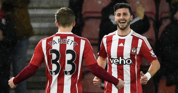 Shane Long: Celebrates his goal against Watford