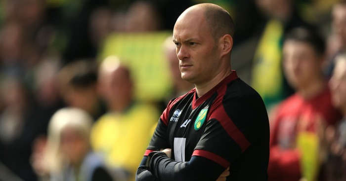 Alex Neil: Was shouted at by Norwich City fan at 1-1 against Newcastle United