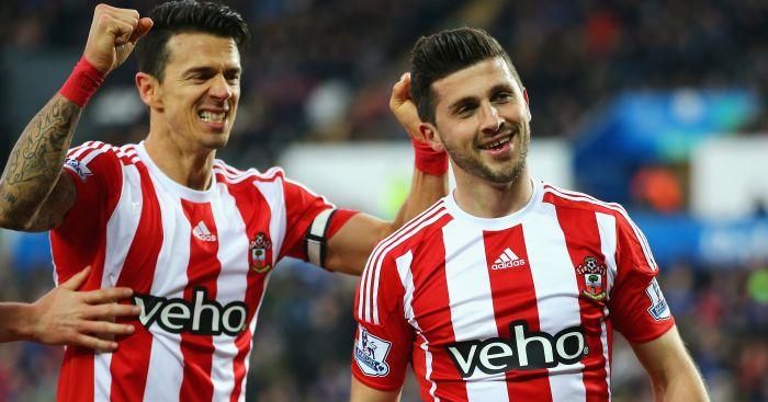 Shane Long: Southampton striker