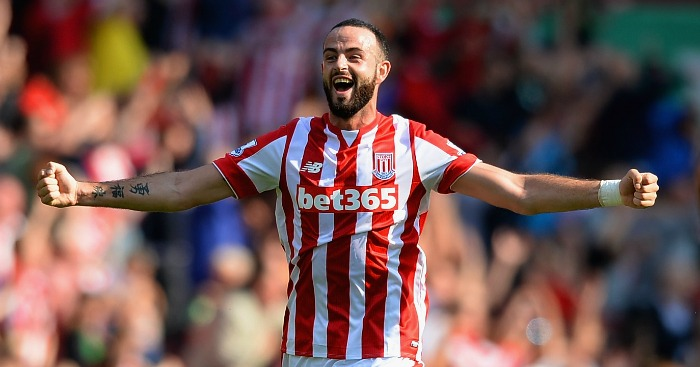 Marc Wilson: Ruled out of Republic of Ireland's Euro 2016 campaign