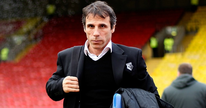 Gianfranco Zola: Tipped to become Hull manager