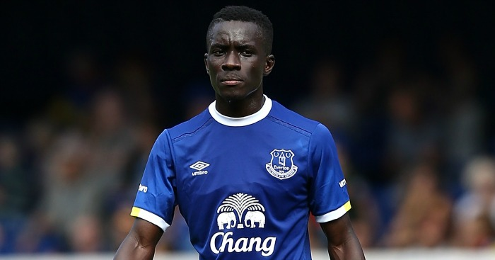 Idrissa Gueye: Caught the eye for Everton