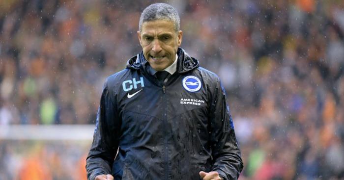 Brighton boss Chris Hughton 2