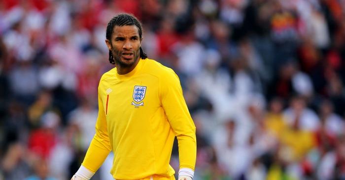 David James: Goalkeeper won 53 caps for England