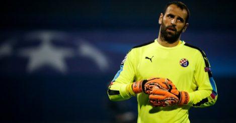 Eduardo: Goalkeeper in action for Dinamo Zagreb