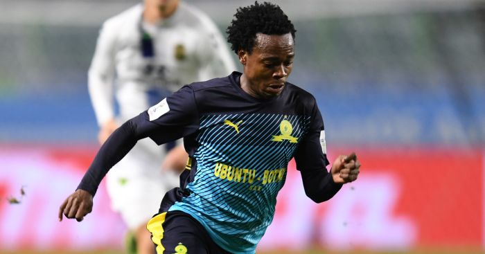 Percy Tau Brighton