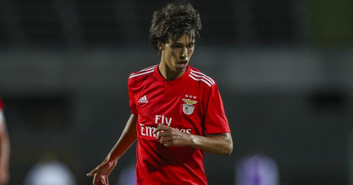 Joao Felix TEAMtalk