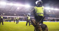 Police Millwall TEAMtalk