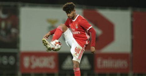 Rafael.Brito_.Benfica.TEAMtalk
