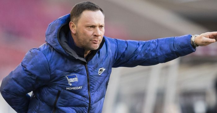 Pal Dardai Hertha Berlin boss