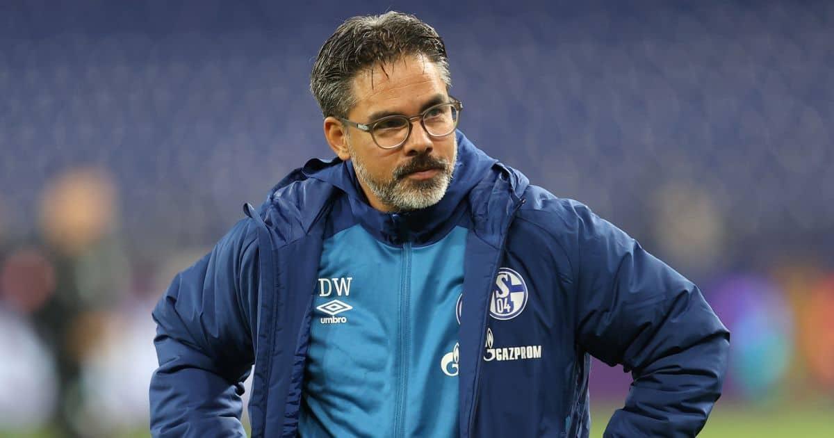 David Wagner Schalke TEAMtalk