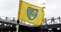 Norwich City flag TEAMtalk