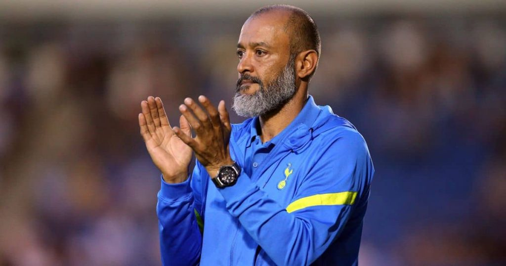 Nuno Espirito Santo Tottenham boss TEAMtalk