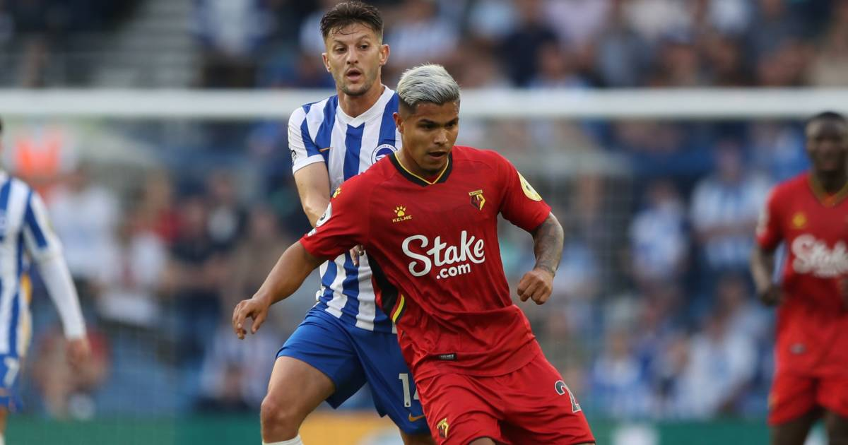 Cucho Hernandez in action for Watford vs Brighton, August 2021