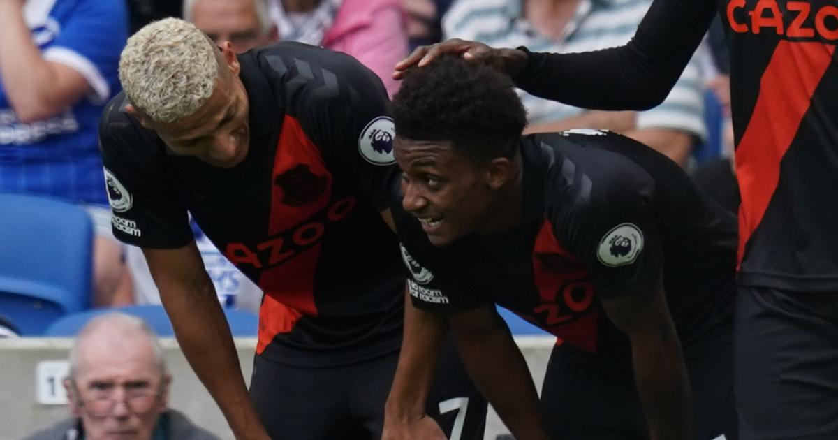 Richarlison and Demarai Gray during Brighton vs Everton, August 2021